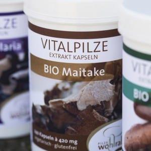 Bio Maitake als Vitalpilz