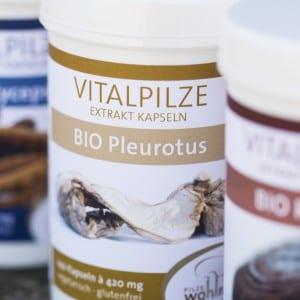 Bio Pleurotus Vitalpilz
